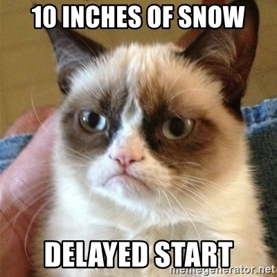 Grumpy Cat  - 10 inches of snow delayed start