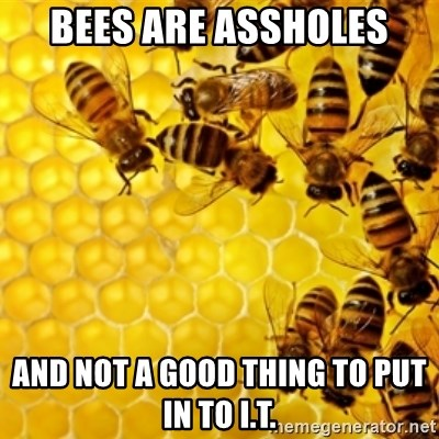 Honeybees - bees are assholes and not a good thing to put in to I.t.