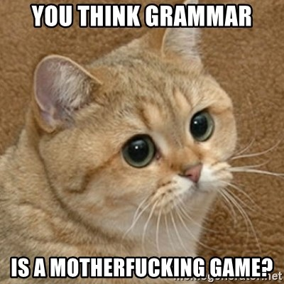 motherfucking game cat - You think grammar is a motherfucking game?