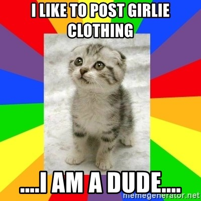 Cute Kitten - I Like to post girlie clothing ....I am a dude....