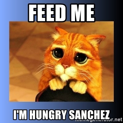 puss in boots eyes 2 - Feed Me I'm hungry sanchez