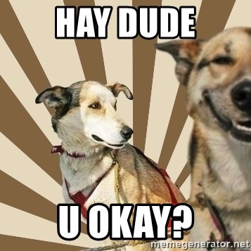 Stoner dogs concerned friend - hay dude u okay?