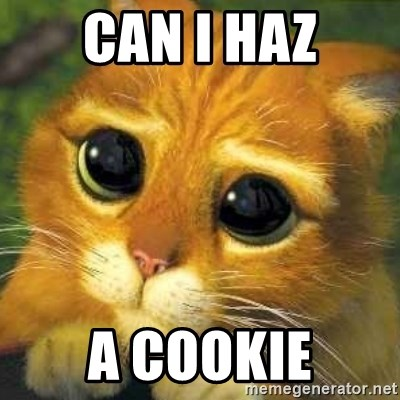 Shrek cat 2 - can i haz a cookie