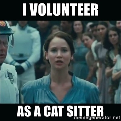 I volunteer as tribute Katniss - I volunteer as a cat sitter