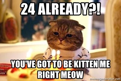 Birthday Cat - 24 aLREADY?! yOU'VE GOT TO BE KITTEN ME RIGHT MEOW