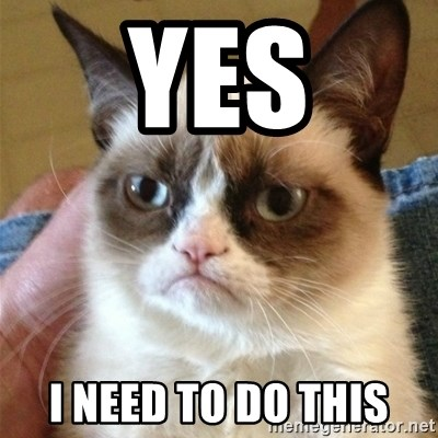 Grumpy Cat  - Yes I need to do this