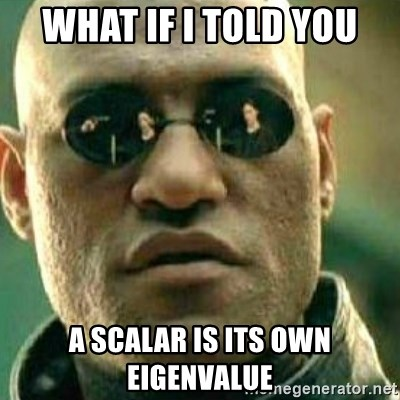 What If I Told You - what if i told you a scalar is its own eigenvalue