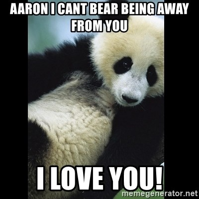 I love you panda - Aaron i cant bear being away from you I love you!
