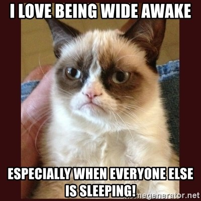Tard the Grumpy Cat - I love being wide awake Especially when everyoNe else is sleeping!