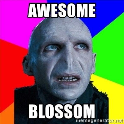 Poor Planning Voldemort - awesome blossom