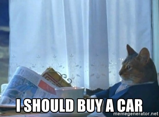 newspaper cat realization -  I should buy a car