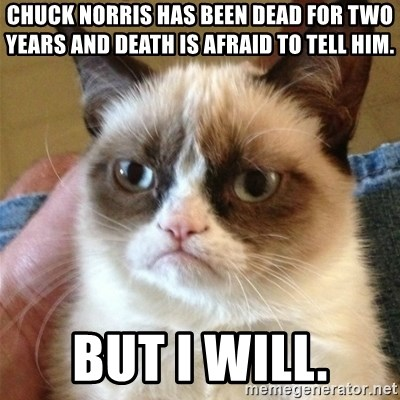 Grumpy Cat  - Chuck norris has been dead for two years and death is afraid to tell him. but i will.