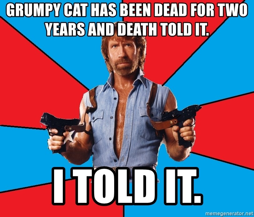 Chuck Norris  - GRUMPY CAT HAS BEEN DEAD FOR TWO YEARS AND DEATH TOLD IT. I TOLD IT.