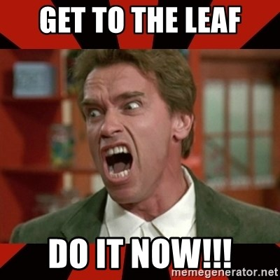 Arnold Schwarzenegger 1 - Get to the leaf do it now!!!
