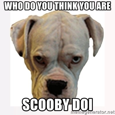 stahp guise - WHO DO YOU THINK YOU ARE SCOOBY DOI