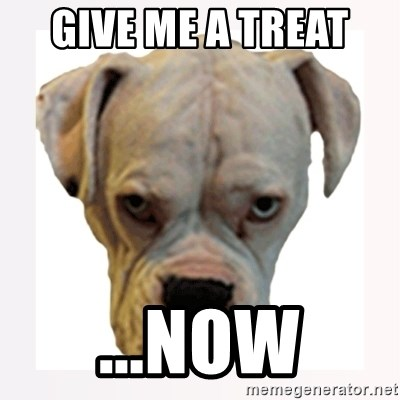 stahp guise - GIVE ME A TREAT  ...NOW