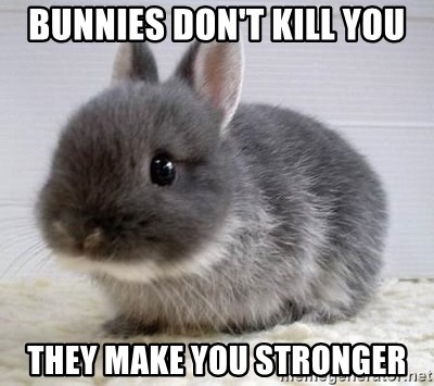 ADHD Bunny - bunnies don't kill you they make you stronger