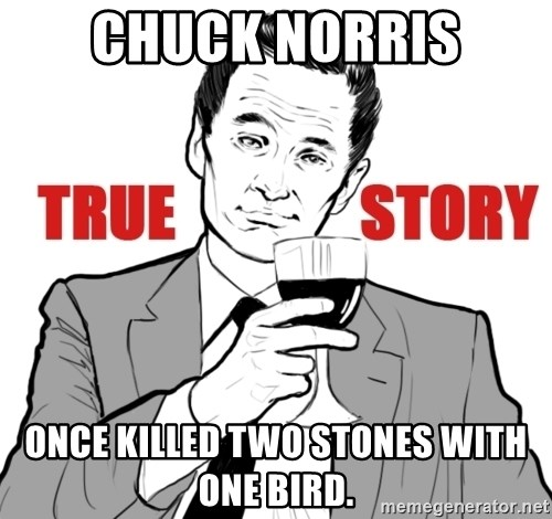 true story - Chuck Norris Once killed two stones with one bird.
