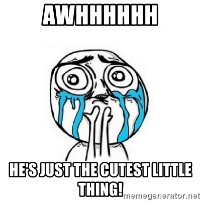 Crying face - Awhhhhhh He's just the cutest little thing!