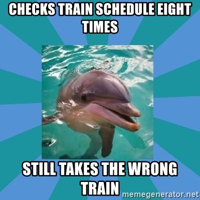 Dyscalculic Dolphin - checks train schedule eight times still takes the wrong train