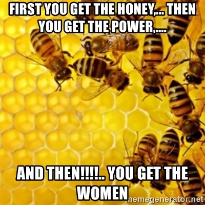Honeybees - First you get the Honey,... Then you get the power,.... and then!!!!.. you get the women