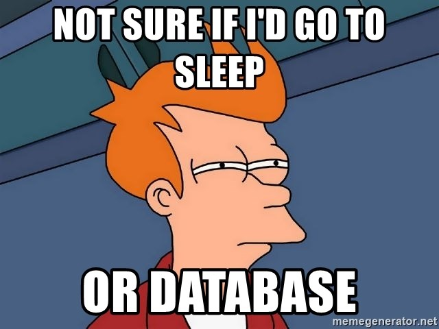 Futurama Fry - Not sure if i'd go to sleep or database