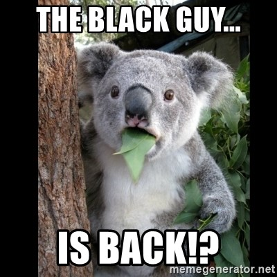 Koala can't believe it - The black guy... is back!?