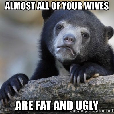 Confession Bear - almost all of your wives are fat and ugly
