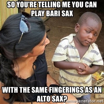 So You're Telling me - So you're telling me you can play bari sax with the same fingerings as an alto sax?