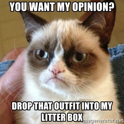 Grumpy Cat  - You want my opinion? Drop that outfit into my litter box