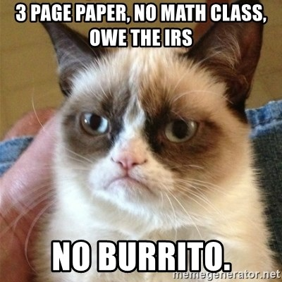 Grumpy Cat  - 3 page paper, no math class, Owe the IRS No burrito.