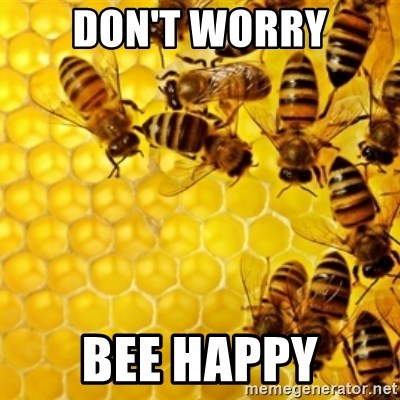 Honeybees - DON'T WORRY BEE HAPPY