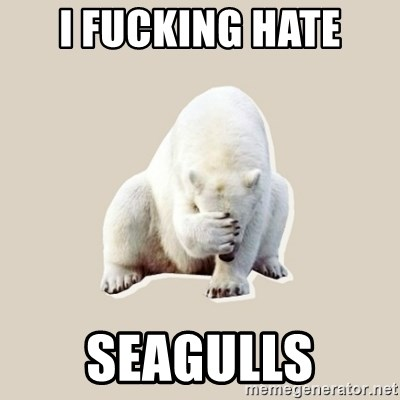 Bad RPer Polar Bear - I fucking hate SeaGulls