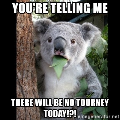 Koala can't believe it - YOU'RE TELLING ME  THERE WILL BE NO TOURNEY TODAY!?!