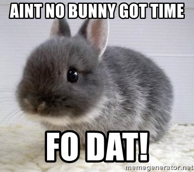 ADHD Bunny - Aint no bunny got time  fo dat!
