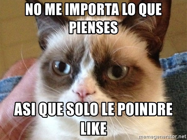 Angry Cat Meme - no me importa lo que pienses asi que solo le poindre like