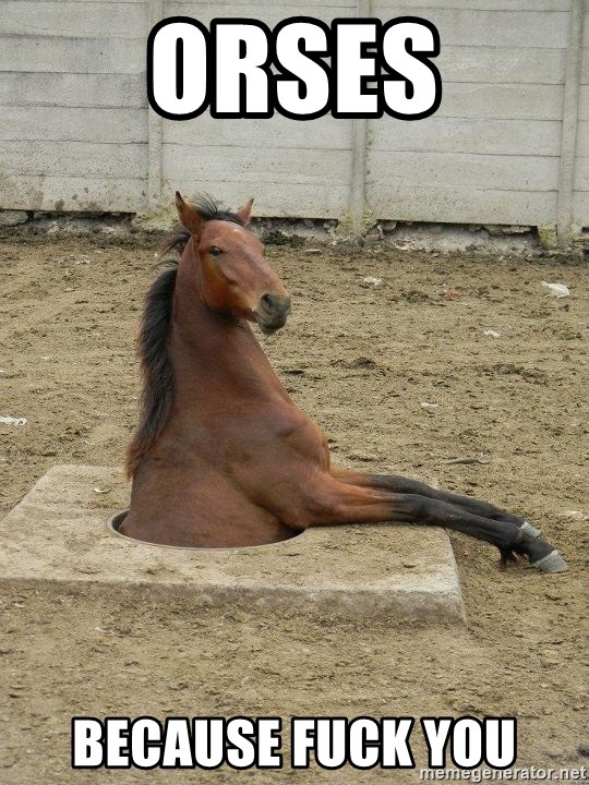 Hole Horse - Orses because fuck you