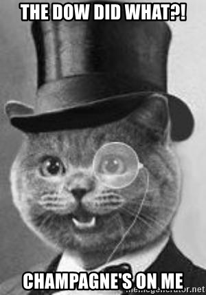 Monocle Cat - THE DOW DID WHAT?! CHAMPAGNE'S ON ME