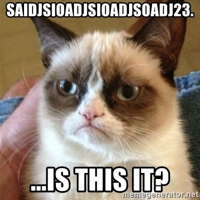 Grumpy Cat  - saidjsioadjsioadjsoadj23. ...is this it?