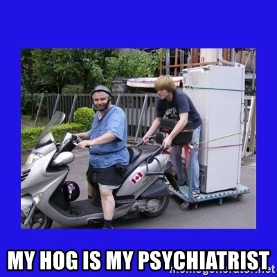 Motorfezzie -  My hog is my psychiatrist