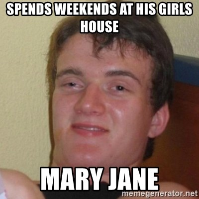 Really Stoned Guy - spends weekends at his girls house mary jane