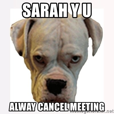 stahp guise - SARAH Y U  ALWAY CANCEL MEETING