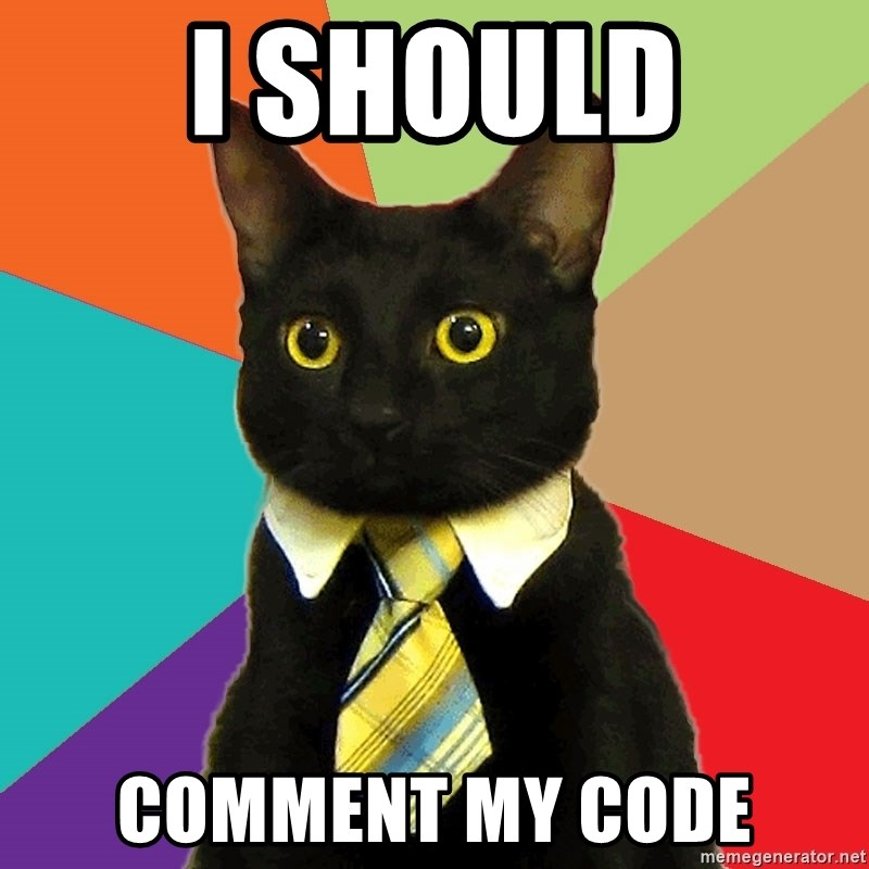 Business Cat - i should Comment my code