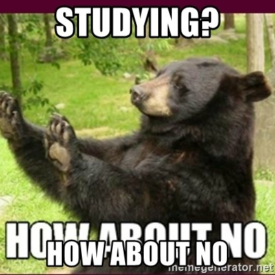 How about no bear - studying? how about no