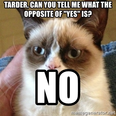 "Grumpy Cat  - TArder, can you tell me what the opposite of ""yes"" is? No"