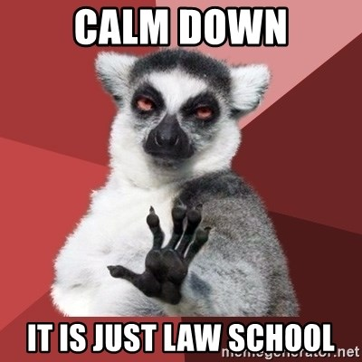 Chill Out Lemur - calm down it is just law school