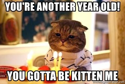 Birthday Cat - YOU'RE ANOTHER YEAR OLD! yOU GOTTA BE KITTEN ME