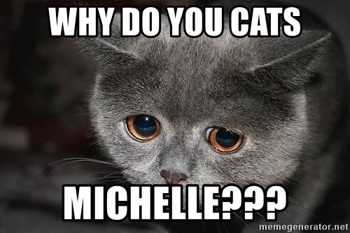 Sadcat - WHY DO YOU CATS MICHELLE???