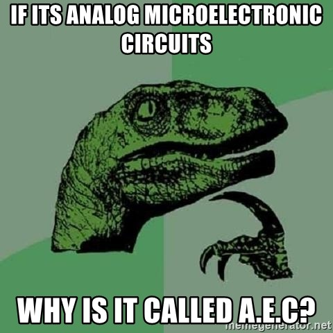 Philosoraptor - if its analog microelectronic circuits why is it called a.e.c?