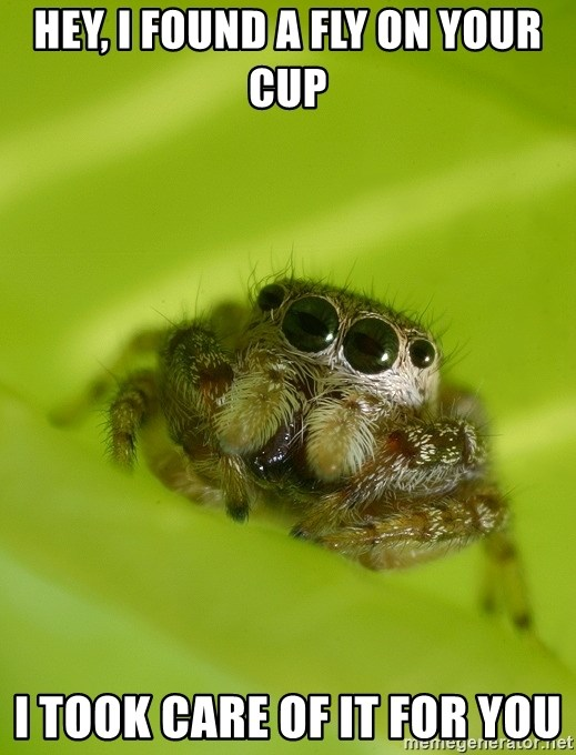 Spiderbro - Hey, I found a fly on your cup I took care of it for you